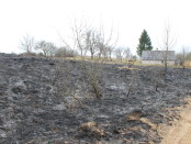 Vilniaus regiono aplinkos apsaugos departamento nuotrauka