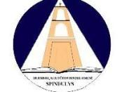 Spindulio logotipas