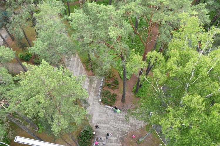 Vaizdas į parką iš viršaus