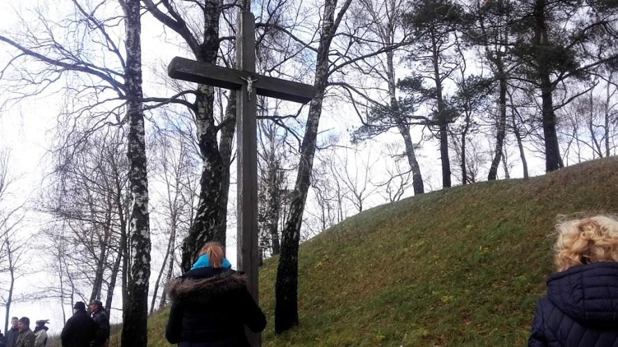 Mateikiškių piliakalnis