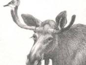R. Šimienės piešinys