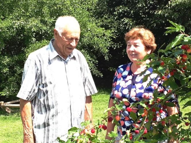 Ona ir Stanislovas prie Rojaus obelaitės