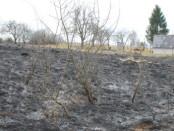 Vilniaus-regiono-aplinkos-apsaugos-departamento-nuotrauka-620x264