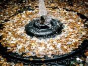 Asociatyvi nuotrauka. Šaltinis: http://blog.goldeneaglecoin.com/